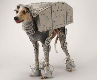 perro_robot